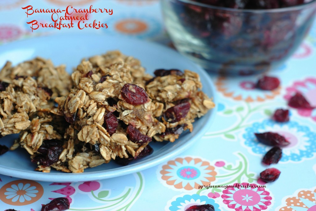 Banana Cranberry Oatmeal Breakfast Cookies