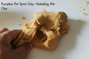 Pumpkin Pie Spice Clay- Kneading the Clay