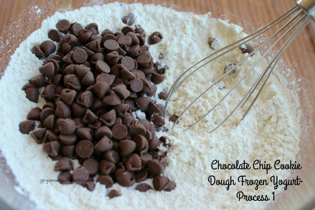 Chocolate Chip Cookie Dough Frozen Yogurt-Process 1